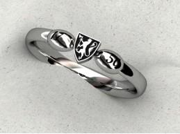 Forslag til ny ks ring